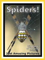 Just Spider Photos! Big Book of Photographs & Pictures of Spiders, Vol. 1 ebook by Big Book of Photos