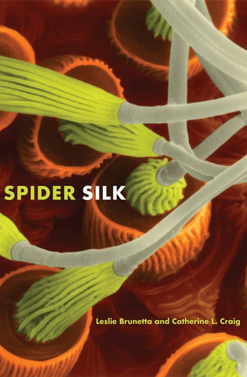 Spider Silk - Evolution and 400 Million Years of Spinning, Waiting, Snagging, and Mating ebook by Leslie Brunetta,Catherine L. Craig