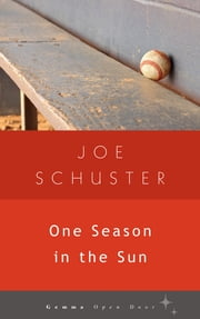 One Season in the Sun ebook by Joe Schuster