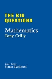 The Big Questions: Mathematics ebook by Tony Crilly