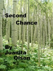 Second Chance ebook by Juanita Olson