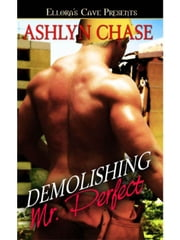 Demolishing Mr. Perfect ebook by Ashlyn Chase