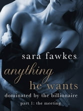 Anything He Wants: The Meeting (#1) ebook by Sara Fawkes