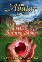 The Avatar of Calderia - Book Two: The Shining Stone ebook by David M. Echeandia