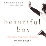 Beautiful Boy - A Father's Journey through His Son's Meth Addiction audiobook by David Sheff