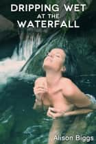 Dripping Wet at the Waterfall ebook by Alison Biggs