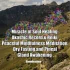 Miracle of Soul Healing: Akashic Record & Reiki, Peaceful Mindfulness Meditation, Dry Fasting and Pineal Gland Awakening audiobook by Greenleatherr