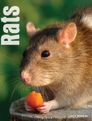 Your Rat eBook by Julie Mancini