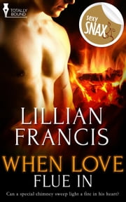 When Love Flue In ebook by Lillian Francis