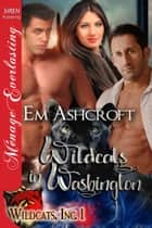 Wildcats in Washington ebook by Em Ashcroft