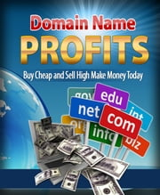 Domain Name Profits ebook by Anonymous