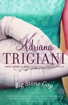 Big Stone Gap - A Novel ebook by Adriana Trigiani