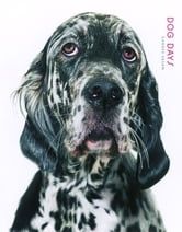 Dog Days ebook by Gandee Vasan,PQ Blackwell, Ltd.