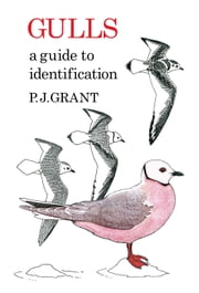 Gulls: A Guide to Identification. 2nd Edition ebook by P.J Grant