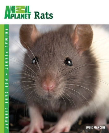 Rats ebook by Julie Mancini