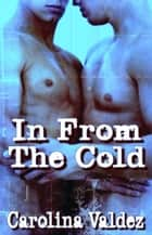 In From The Cold ebook by Carolina Valdez