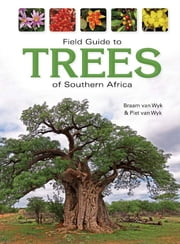Field Guide to Trees of Southern Africa ebook by Piet van Wyk,Braam van Wyk