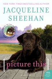 Picture This - A Novel ebook by Jacqueline Sheehan