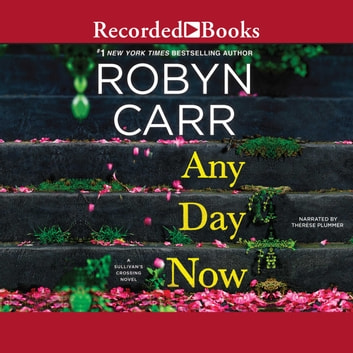Any Day Now livre audio by Robyn Carr