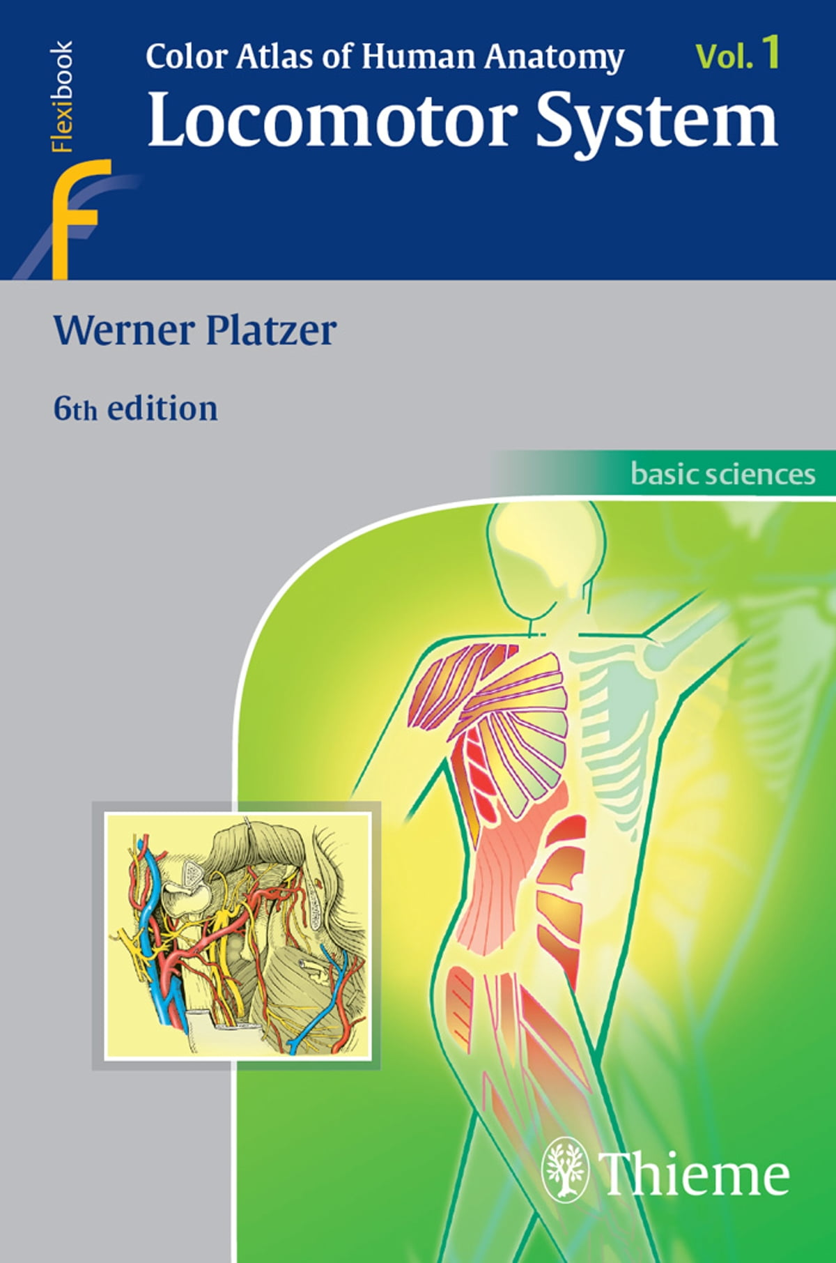 Color Atlas Of Human Anatomy Ebook By Werner Platzer 9783131494818