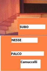 SUBO NESSE PALCO ebook by camuccelli Sr