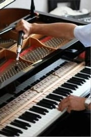 An Easy Guide on How to Tune Your Piano ebook by Stipe Jones
