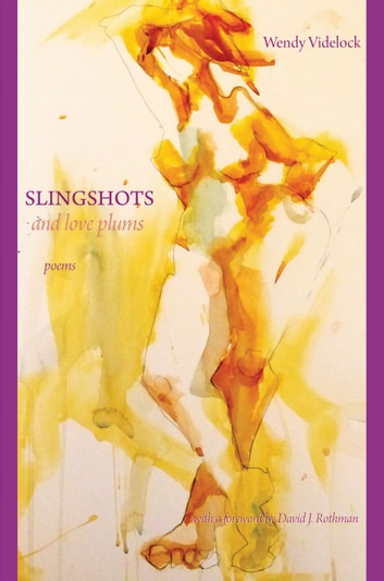 Slingshots and Love Plums - Poems ebook by Wendy Videlock
