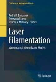 Laser Filamentation - Mathematical Methods and Models ebook by Andre D. Bandrauk,Emmanuel Lorin,Jerome V. Moloney