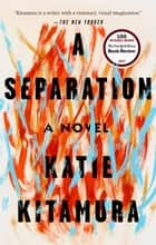 A Separation - A Novel ebook by