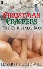 The Christmas Box ebook by Elizabeth Coldwell