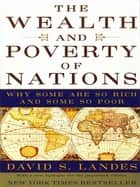 The Wealth and Poverty of Nations: Why Some Are So Rich and Some So Poor ebook by David S. Landes