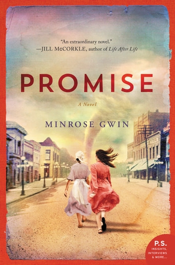 Promise - A Novel ebook by Minrose Gwin