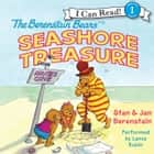 The Berenstain Bears' Seashore Treasure audiobook by Jan Berenstain, Stan Berenstain