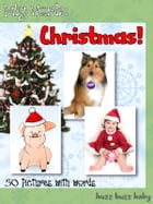 Baby Words and Pictures: Christmas! by buzz buzz baby