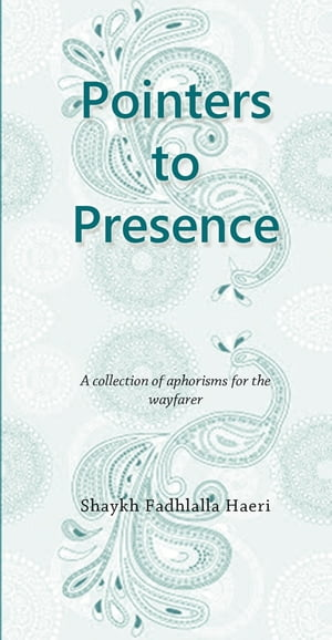 Pointers to Presence A Collection of Aphorisms for the Wayfarer