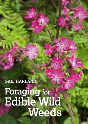 Foraging for Edible Wild Weeds