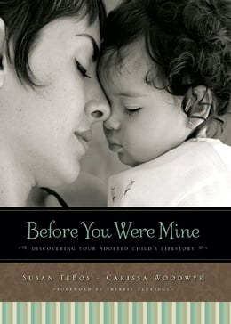 Book Before You Were Mine: Discovering Your Adopted Child's Lifestory by Susan TeBos