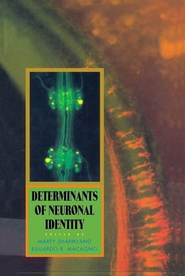 Book Determinants of Neuronal Identity by Shankland, Marty