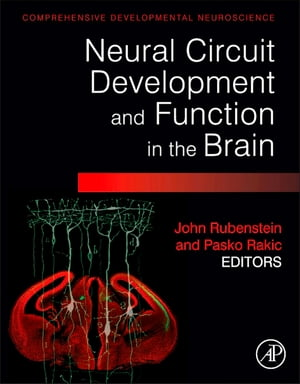 Neural Circuit Development and Function in the Healthy and Diseased Brain Comprehensive Developmental Neuroscience