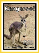Just Kangaroo Photos! Big Book of Photographs & Pictures of Kangaroos, Vol. 1 by Big Book of Photos