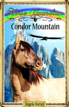 Condor Mountain by Angela Dorsey