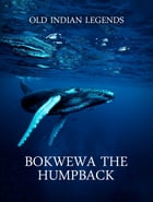 Bokwewa the Humpback by Old Indian Legends