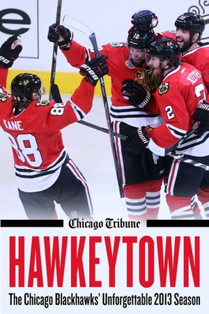 Hawkeytown The Chicago Blackhawks' Unforgettable 2013 Season