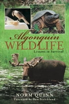 Algonquin Wildlife: Lessons in Survival