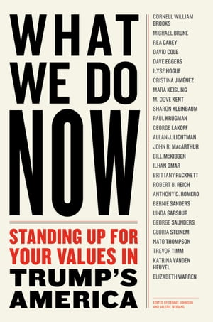 WHAT WE DO NOW: Standing Up for Your Values in Trump's America by Dennis Johnson