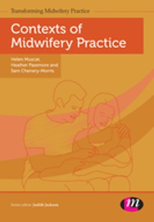 Contexts of Midwifery Practice