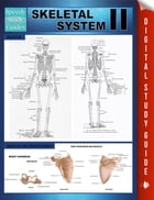 Skeletal System II (Speedy Study Guides) by Speedy Publishing