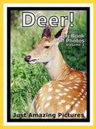 Just Deer, Fawn, and Buck Photos! Big Book of Photographs & Pictures of Deer, Fawns, and Bucks, Vol. 1 by Big Book of Photos