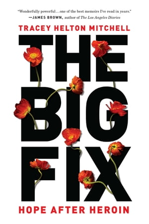 The Big Fix Hope After Heroin