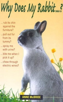 Book Why Does My Rabbit . . . ? by Anne McBride